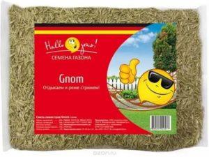 Как выбрать газонную смесь