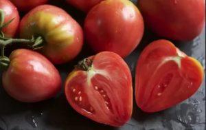Самоопыляемые сорта томатов для теплицы