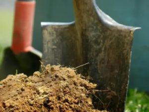 Удобрение земли осенью