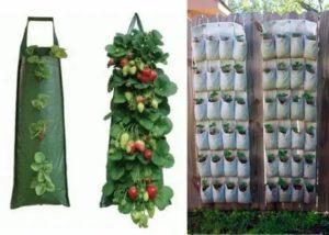 Мешки для посадки клубники
