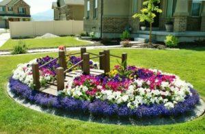 Как украсить газон цветами