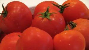 Сорта помидор для ростовской области