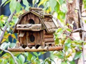 Домик для птиц своими руками из дерева