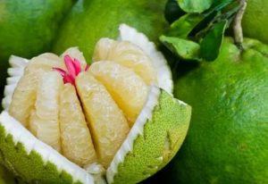 Помело фрукт