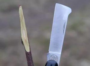 Нож для прививки деревьев своими руками