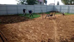 Газон на глинистой почве