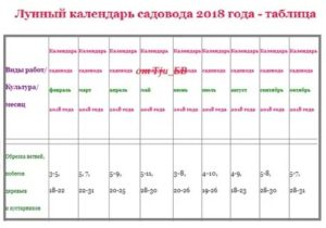 Обрезка деревьев по лунному календарю