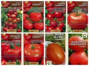 Названия семян томатов
