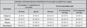 Какую минимальную температуру выдерживают помидоры