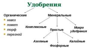 Схема виды удобрений