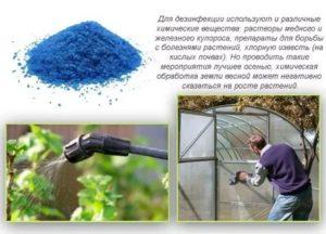 Дезинфекция почвы медным купоросом