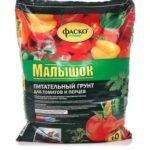 Лучшие сорта помидоров для кировской области