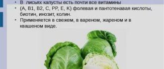 Капуста витамины в ней