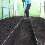 Уход за помидорами открытом грунте видео