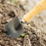 Подготовка почвы в парнике